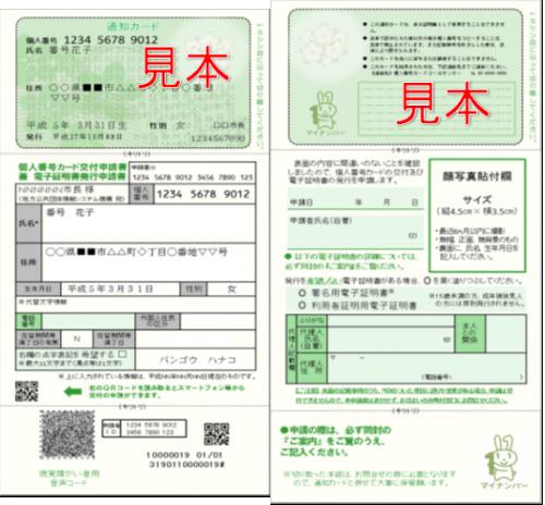 文京区のマイナンバ通知カード見本