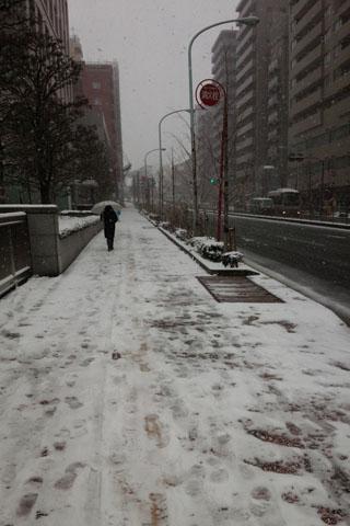 護国寺【文京区】にも寒波がやってくる!指先の冷え性対策教えます