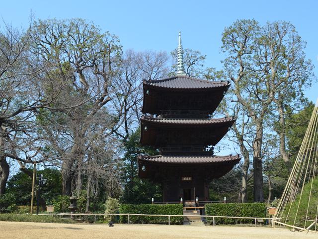 椿山荘の三重塔-神楽坂散歩