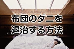 数万匹のダニと一緒に寝てませんか?布団のダニを退治する方法