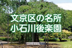 文京区には小石川後楽園がある!特別名勝に指定された都立庭園の見どころ