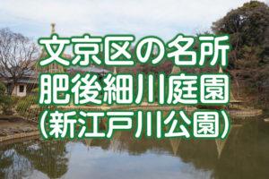 新江戸川公園(肥後細川庭園)に行ってきた!見どころ・アクセスを解説