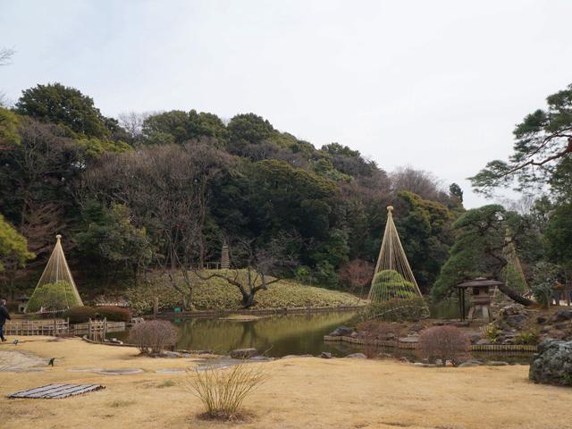 文京区、肥後細川庭園(新江戸川公園)の池泉回遊式庭園全景