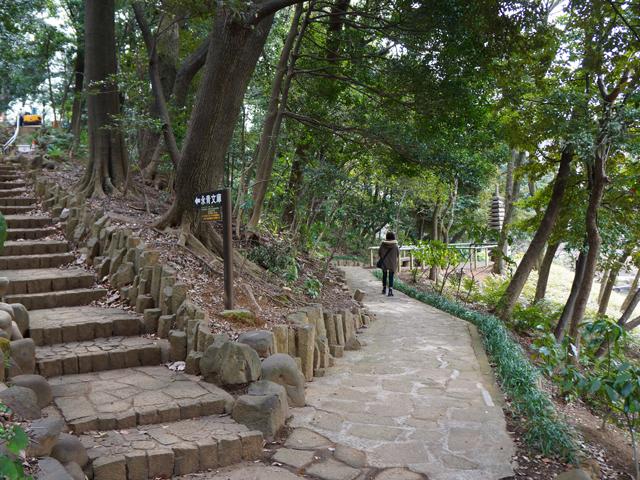 文京区、肥後細川庭園(新江戸川公園)の遊歩道