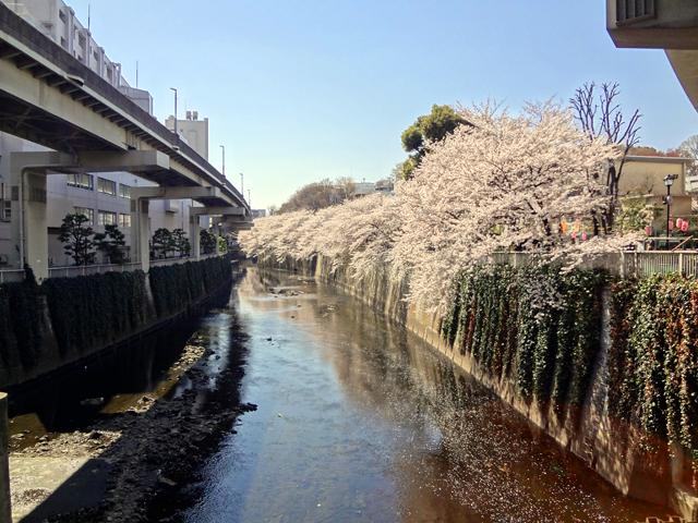 東京都文京区の江戸川橋ってどんな所?家賃・治安・住みやすさを紹介