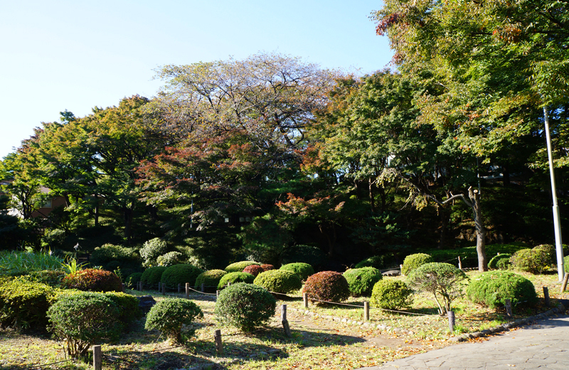 文京区関口台公園の景色