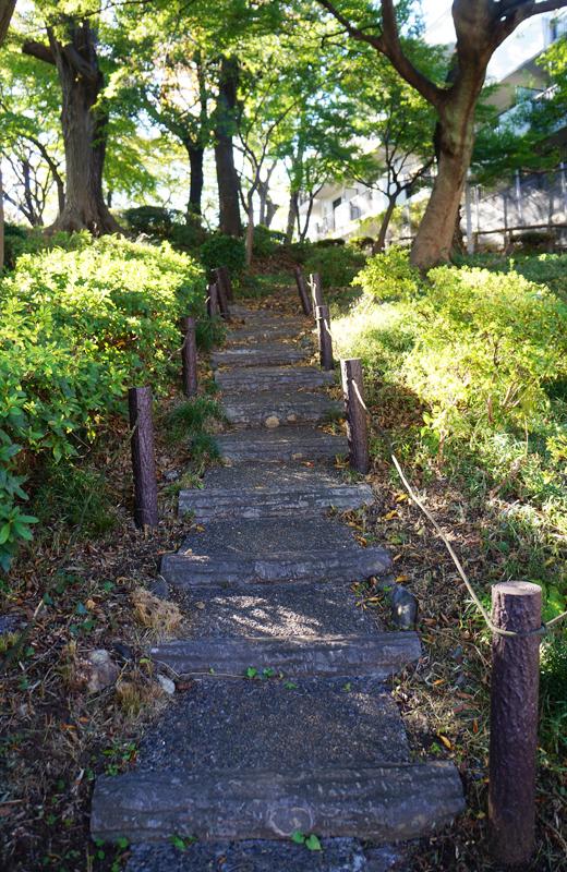 文京区関口台公園の階段