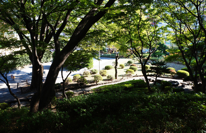文京区関口台公園の頂上から見た