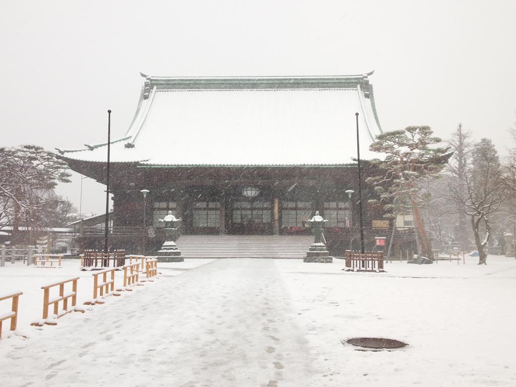 夏が近づいてきたからこそ、雪の護国寺を画像を貼ります。
