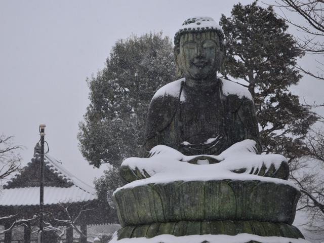 護国寺大仏