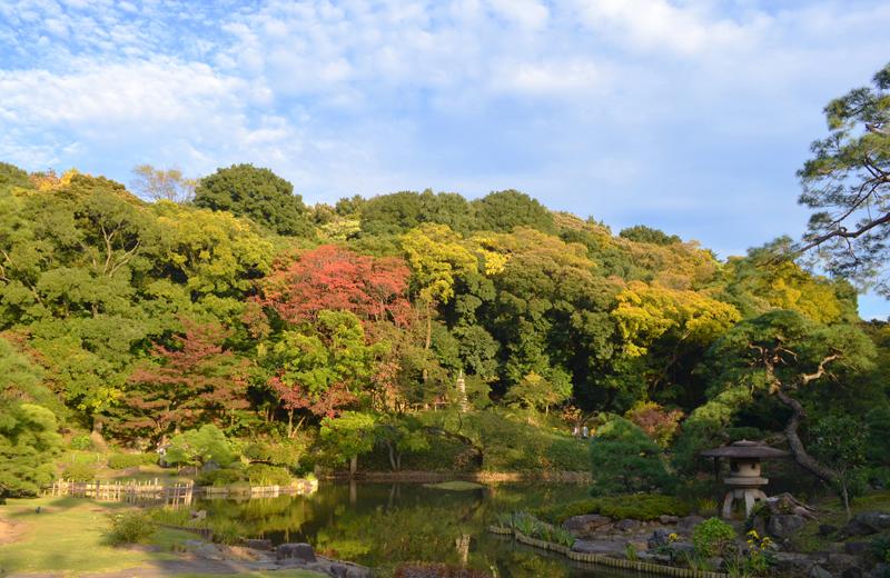 肥後細川庭園の池泉回遊式庭園・紅葉