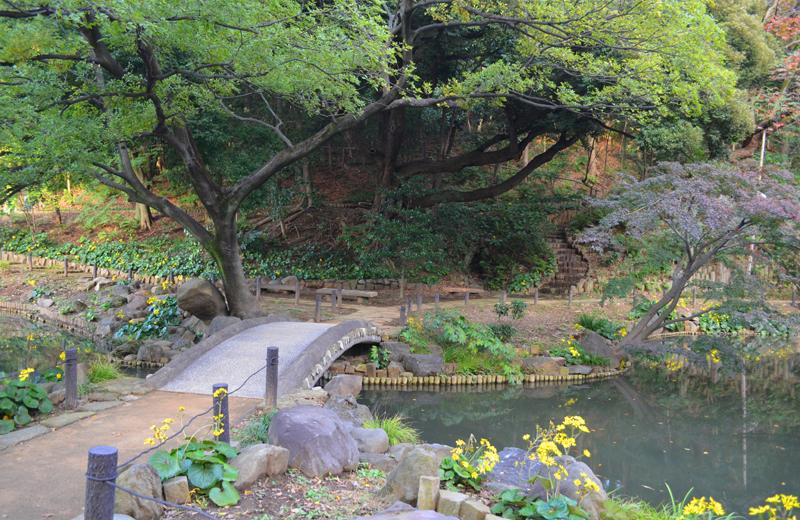 肥後細川庭園の土橋