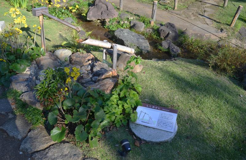 肥後細川庭園のししおどし