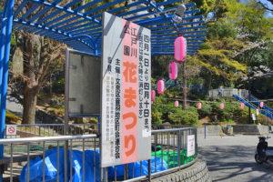 江戸川公園「花まつり」開催中