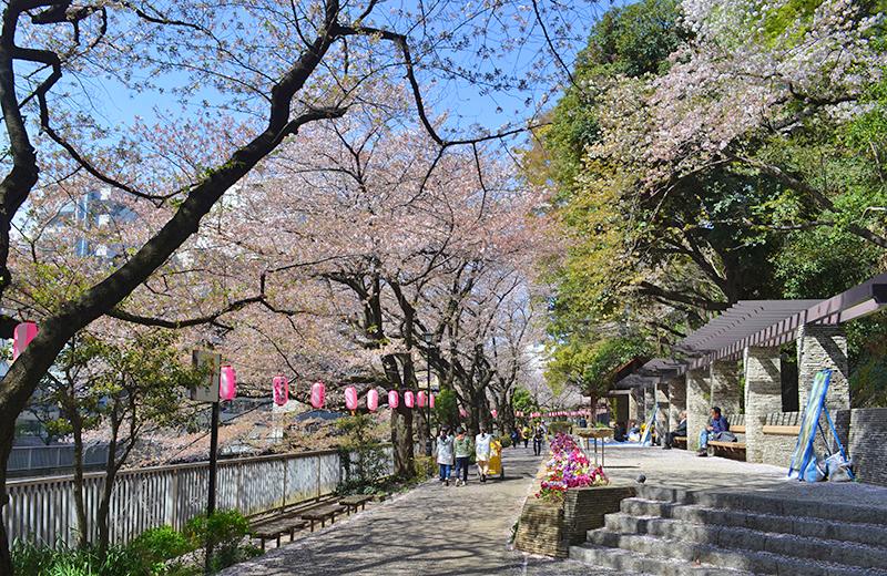 江戸川公園、石の広場