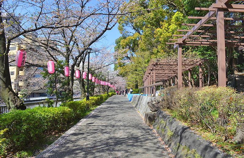江戸川公園、四阿