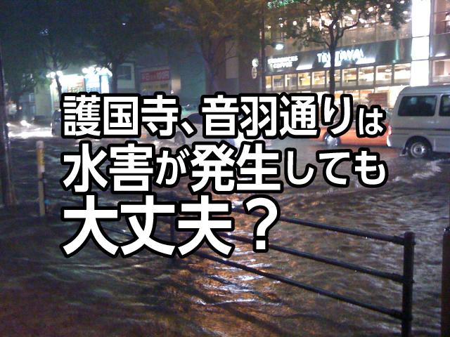 護国寺、音羽通りは水害が発生しても大丈夫?