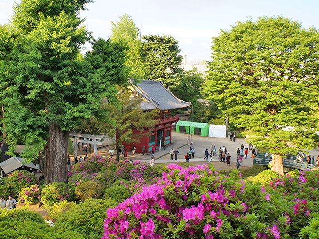 根津神社の楼門(国指定重文)