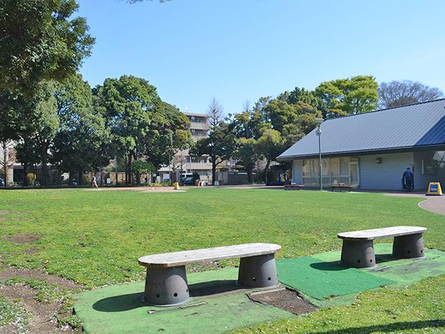 芝生広場、目白台運動公園