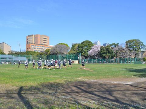 多目的広場、目白台運動公園