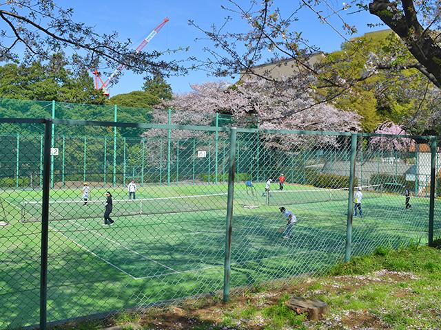 テニスコート、目白台運動公園