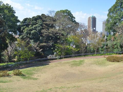 斜面地広場、目白台運動公園