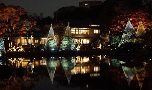 秋の紅葉ライトアップ‐ひごあかり‐肥後細川庭園に行ってきました