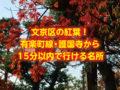 文京区の紅葉・黄葉!有楽町線・護国寺から15分で行ける名所