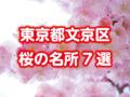 文京区【桜の名所】をまとめて7か所紹介!六義園・播磨坂・小石川後楽園・江戸川公園など