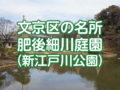 肥後細川庭園(新江戸川公園)に行ってきた!見どころ・アクセスを紹介