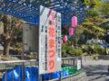 江戸川公園【桜-さくら-】花まつり直前!花見情報2018年版